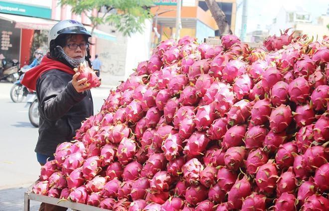 Trung Quoc khong mua, dua hau, thanh long rot gia con 6.000 dong/kg hinh anh 1