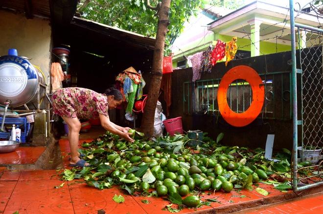 Nguoi dan Quang Tri tat bat don dep nha cua, duong pho sau bao so 4 hinh anh 8