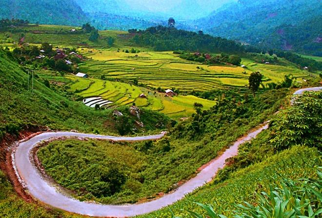 Dan so Viet Nam dong thu may the gioi? hinh anh 2