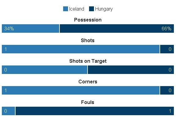Truc tiep Iceland vs Hungary anh 8
