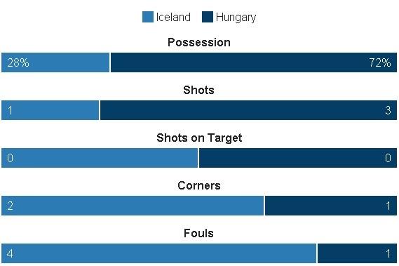 Truc tiep Iceland vs Hungary anh 13