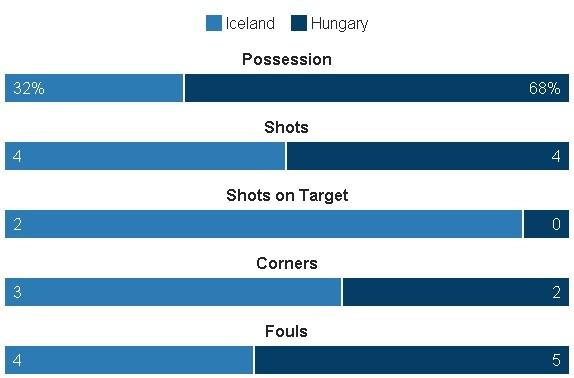 Truc tiep Iceland vs Hungary anh 20