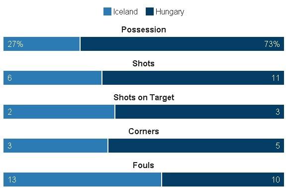 Truc tiep Iceland vs Hungary anh 27