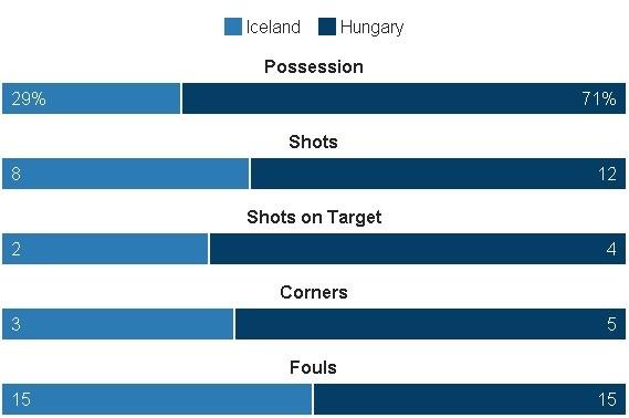 Truc tiep Iceland vs Hungary anh 31