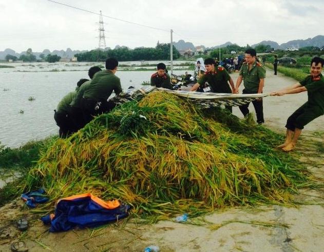 Cong an Ninh Binh loi chan dat giup dan gat lua hinh anh 2