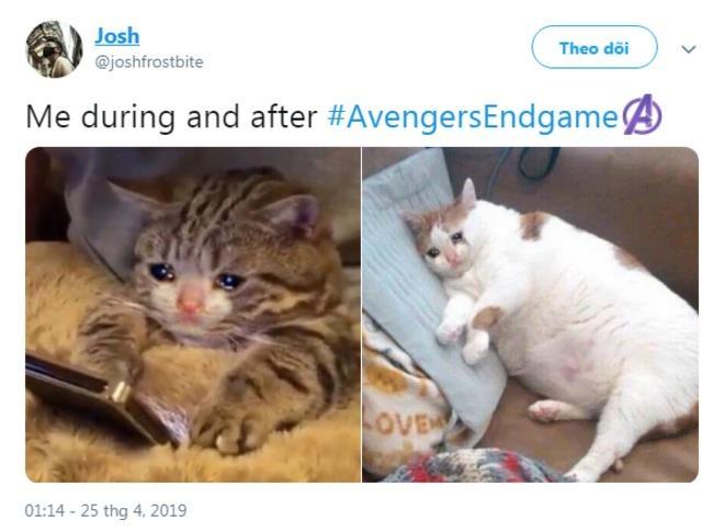 Noi buon bao trum mang xa hoi the gioi sau 'Avengers: Endgame' hinh anh 3