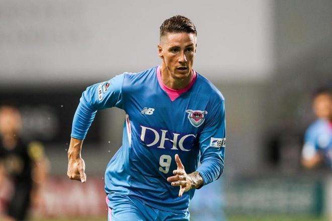 Fernando Torres tuyen bo giai nghe hinh anh 1