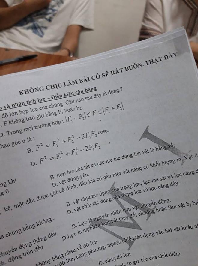Giao vien Dak Lak nan ni hoc tro: 'Khong chiu lam bai co se rat buon' hinh anh 1