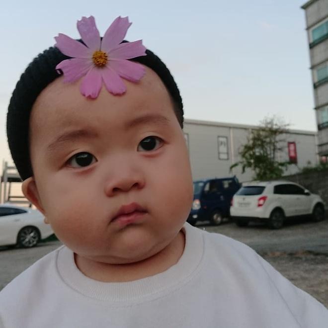 Be trai Han Quoc 2 tuoi noi tieng tren mang vi bieu cam hai huoc hinh anh 1