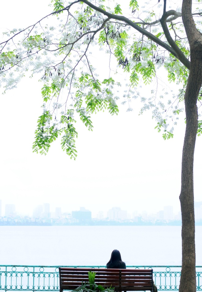 Ho Tay tho mong trong long Ha Noi hinh anh 12
