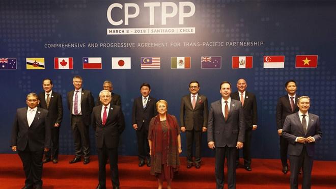 TPP-11 ban viec moi Anh, Thai Lan, Han Quoc gia nhap vao thang 1/2019 hinh anh