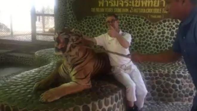 Canh ho bi nguoc dai o so thu Thai Lan hinh anh