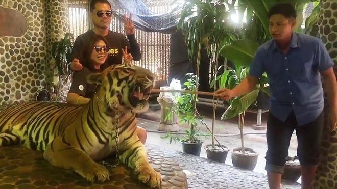 Ho o so thu Thai Lan bi nguoc dai cho khach selfie hinh anh