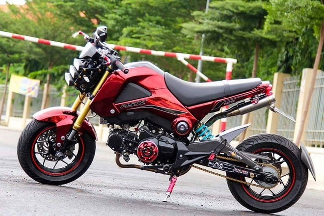 Honda MSX do dan ao mau doc o Sai Gon hinh anh