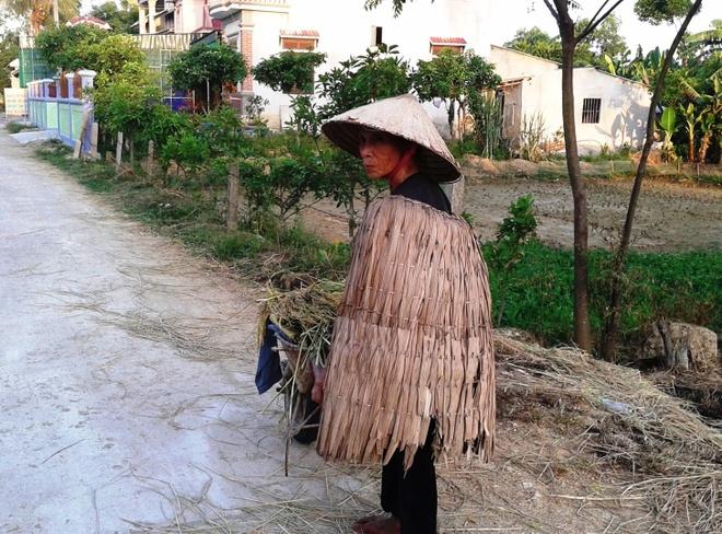 Chao lua mien Trung trong cai nong 40 do C hinh anh 13 Người dân mặc áo tơi chống nóng đi làm đồng ở huyện Can Lộc, Hà Tĩnh.