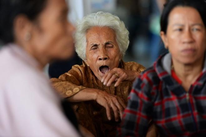 Hang nghin Viet kieu ve an Tet, san bay ket cung hinh anh 11