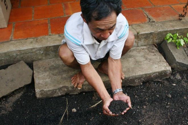 Nguoi Nam bo bo nha ra vuon ngu vi bi bo dau den tan cong hinh anh 1 Theo ông Nguyễn Văn Châu, gia đình ông đã dùng mọi biện pháp như quét, đốt, đổ nước sôi, xịt thuốc trừ sâu để diệt bọ nhưng không xuể vì bầy này chết bầy khác lại xuất hiện. Nhiều ngày nay những người trong gia đình ông đều phải tìm cách lánh nạn như dựng chòi ra ngoài vườn ngủ, còn một trẻ em phải đi ngủ nhờ người thân.