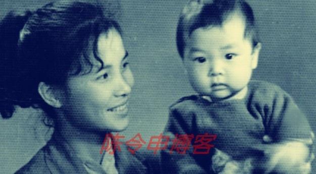 Chung Tử Đơn từ nhỏ đã được mẹ truyền dạy cho học thái cực cùng nhiều phái võ truyền thống Trung Hoa cũng như của phương Tây.