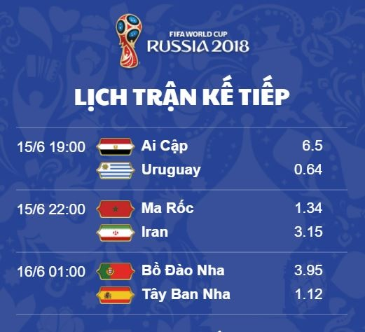 truc tiep World Cup anh 5