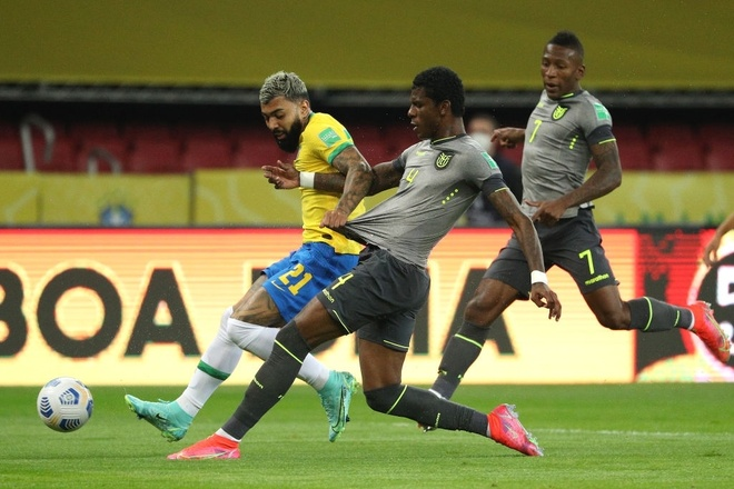 Brazil vs Ecuador anh 16