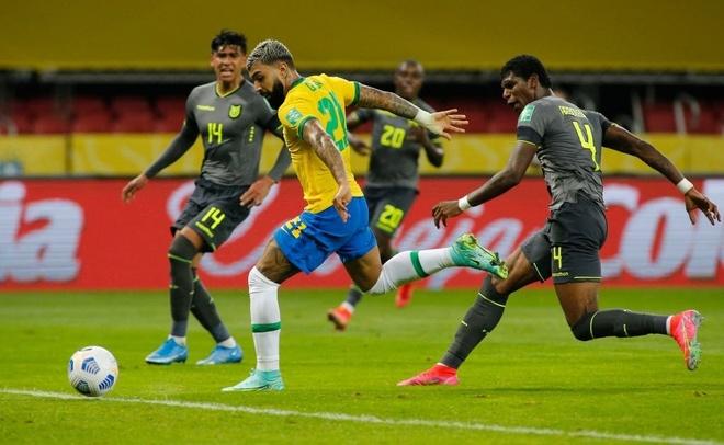 Brazil vs Ecuador anh 20