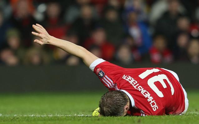 Ibrahimovic co giong Schweinsteiger? hinh anh 3