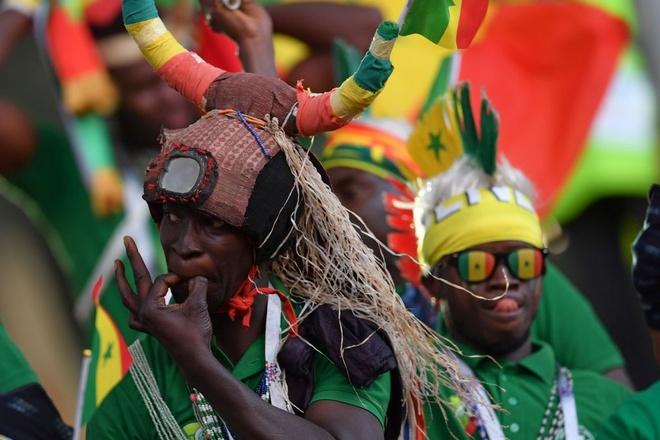 Nhat Ban vs Senegal: Hap dan tu tren san bong den khan dai hinh anh 2
