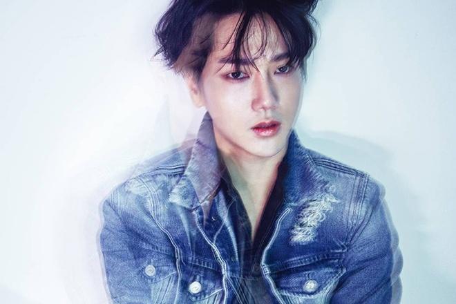 Yesung - Chang trai ti hon tai nang cua Super Junior hinh anh 2
