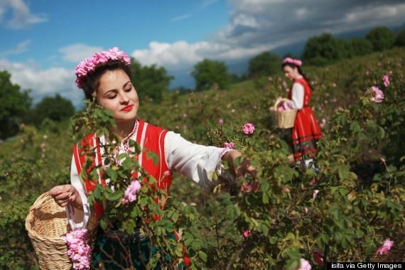 le hoi hoa hong Bulgaria anh 1