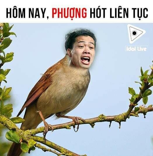 Thu mon Lam Tay 'nhan roi' tro thanh chu de che anh sau tran gap Lao hinh anh 2