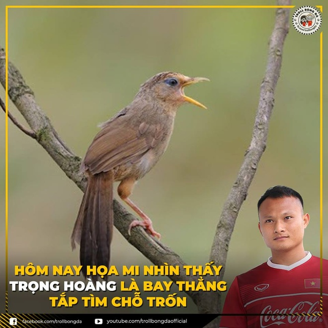 'Bao cat' Quang Hai duoc dan mang che anh sau tran gap Philippines hinh anh 1