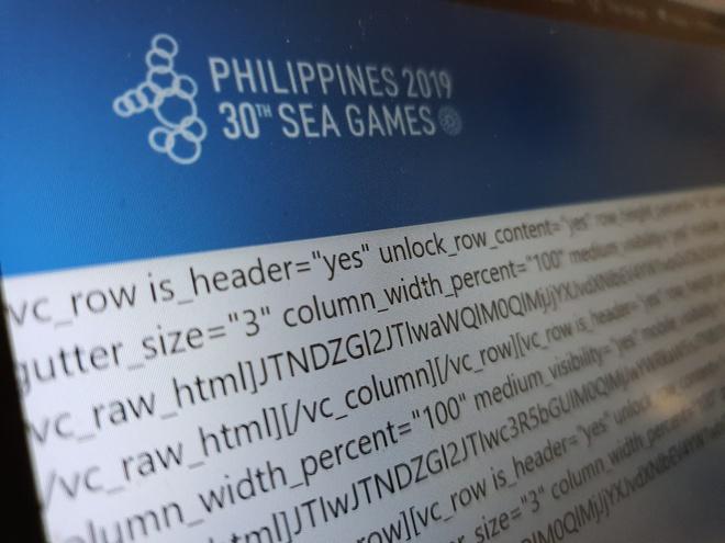 Fan Viet buc xuc vi xem SEA Games 30 nhu phim hoat hinh hinh anh 2