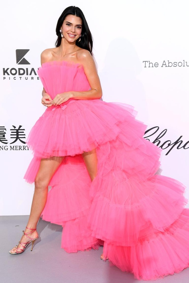 tham do Cannes 2019 anh 1