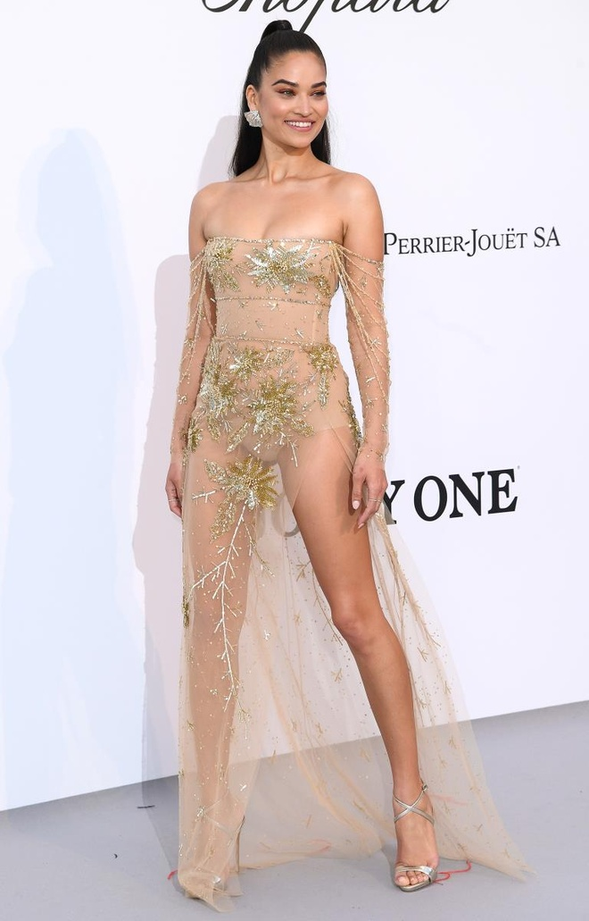 tham do Cannes 2019 anh 4
