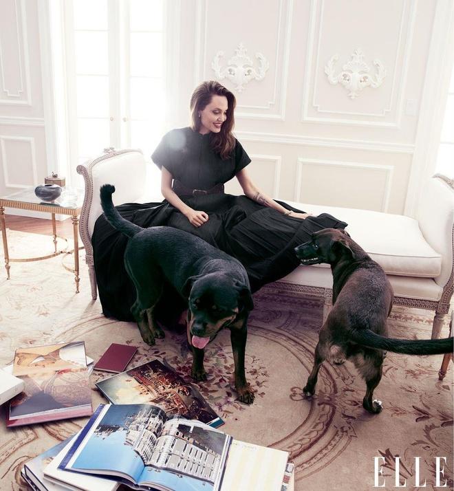 Angelina Jolie khoe nhan sac man ma o tuoi 44 hinh anh 3