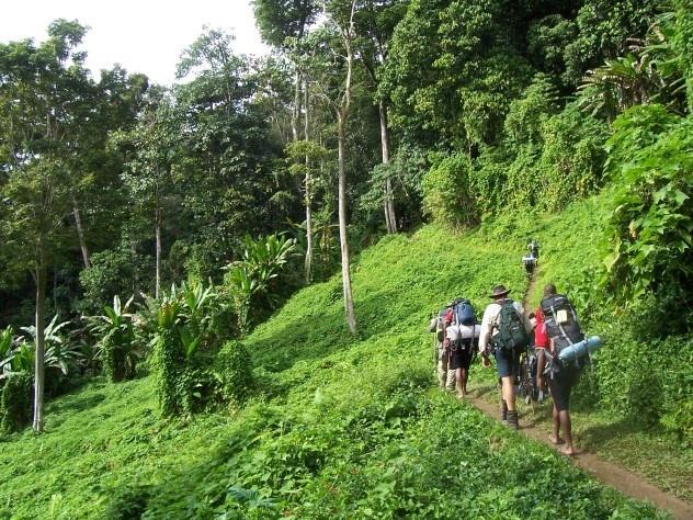 10 diem du lich 'chet nguoi' hut khach nhat the gioi hinh anh 10 10. Đường mòn Kokoda và Black Cat: Đường Kokoda kéo dài gần 100km qua những vùng đất nóng ẩm, hiểm trở và đầy đỉa từ bờ Bắc tới bờ Nam Papua New Guinea. Các khu rừng nơi đây có nhiều loài động vật hiếm, nước sạch và ngôi làng của các dân tộc thiểu số. Đây cũng là nơi diễn ra nhiều trận chiến của Thế Chiến II. Mỗi năm, có tới hàng ngàn du khách tới đây dù biết trước những nguy hiểm có thể xảy ra , từ trẹo chân tới mất mạng. Để khám phá hết con đường này, du khách cần tới 10 ngày đi bộ, leo trèo và bơi trong khi phải cõng theo đồ dùng của mình. Mất nước, gãy xương và ngã bệnh là những mối nguy thường trực nhất. Ngoài ra, họ còn cò thế bị dân làng tấn công và cướp đồ.