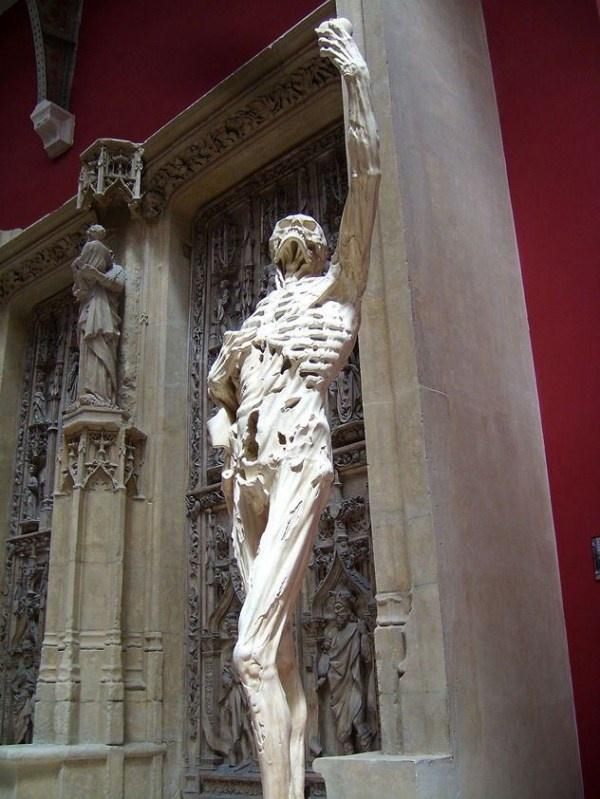 Nhung buc tuong ki quac nhat the gioi hinh anh 1 Tượng René de Chalon, hoàng tử xứ Orange, đặt tại nhà thờ Saint-Étienne ở Bar-le-Duc, Pháp. Thay vì hình ảnh oai phong lẫm liệt thường thấy của các hoàng tử, bức tượng này lại có dạng xác đang phân hủy, gần như chỉ còn trơ xương, một tay ôm ngực, một tay cầm trái tim. Có người cho biết ý nghĩa của bức tượng là Cát bụi rồi sẽ trở về với cát bụi, dù là hoàng tử hay người thường.