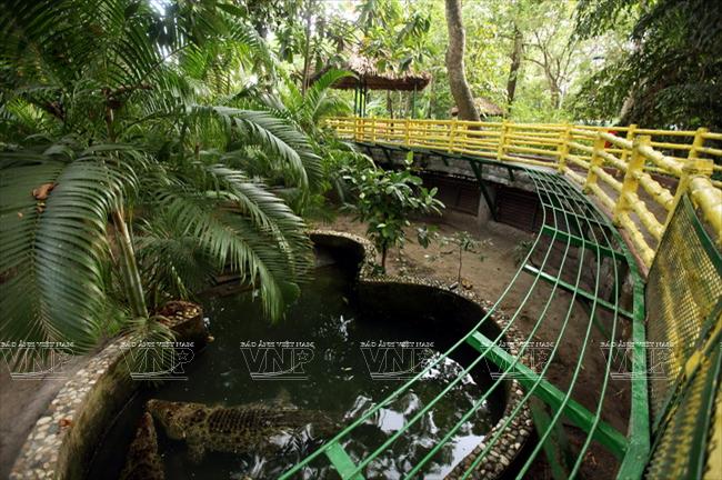 Toi tham mot trong 8 so thu lau doi nhat the gioi o Viet Nam hinh anh 11 Một góc khu bảo tồn cá sấu.