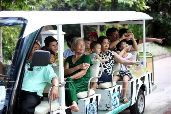 Toi tham mot trong 8 so thu lau doi nhat the gioi o Viet Nam hinh anh 1 Du khách tham quan Thảo Cầm viên bằng xe điện.