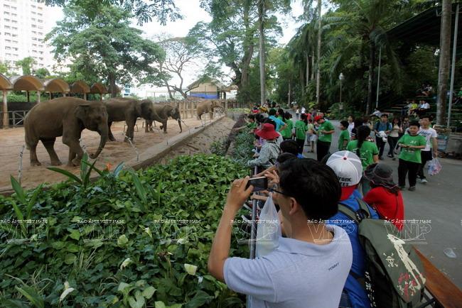 Toi tham mot trong 8 so thu lau doi nhat the gioi o Viet Nam hinh anh 3 Thảo Cầm Viên Sài Gòn là một trong tám vườn thú lâu đời nhất thế giới.