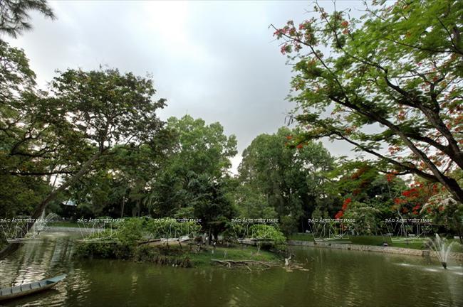 Toi tham mot trong 8 so thu lau doi nhat the gioi o Viet Nam hinh anh 5 Thảo Cầm viên Sài Gòn được xem là một công viên khoa học về tự nhiên lớn nhất Đông Dương và nổi tiếng ở Đông Nam Á.