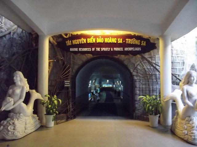 Tham bao tang sinh vat bien lon nhat Viet Nam hinh anh 11 Khu trưng bày về Hoàng Sa và Trường Sa ở viện.