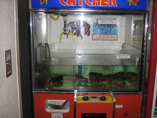 Nhung may ban hang tu dong ky la o Nhat Ban hinh anh 1 Máy bán tôm hùm: Bạn có thể thấy các máy bán tôm hùm tươi ở Osaka được làm theo dạng máy gắp thú bông.