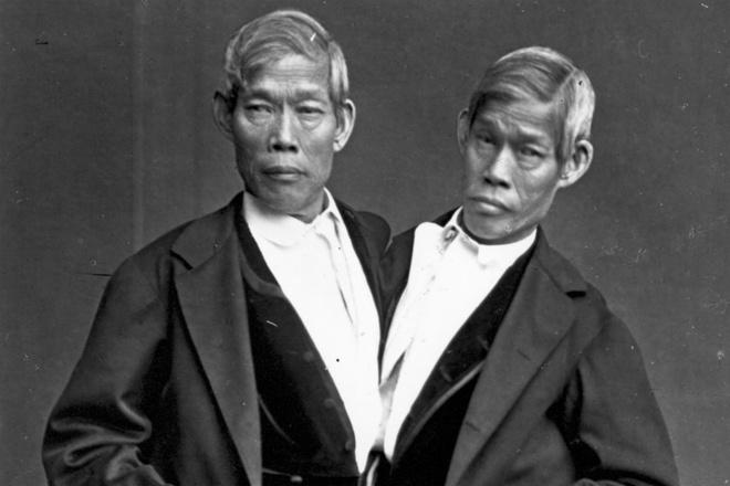 """7 dieu la lung o Thai Lan hinh anh 3 Quê hương của cặp sinh đôi dính liền đầu tiên nổi tiếng thế giới: Eng và Chang sinh năm 1811 ở ngoại ô Bangkok, thời đó Thái Lan có tên Siam. Vì vậy mà thuật ngữ """"Siamese twins"""" (cặp sinh đôi dính liền) đã ra đời và được sử dụng tới ngày nay. Eng và Chang theo rạp xiếc P.T. Barnum chu du khắp thế giới và cuối cùng chuyển tới Mỹ, nơi cả hai người kết hôn, sinh con và sống tới 62 tuổi."""