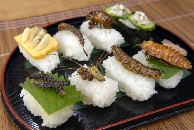 Nhung mon dac san ngay ca nguoi Nhat cung so hinh anh 1 Sushi côn trùng: Thay vì thịt cá như thông thường, món sushi này được dùng kèm với gián, sâu và các loại ấu trùng khác.