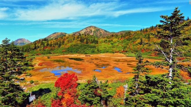 Nhung canh dep me hon o Nhat Ban hinh anh 8 Hồ Koya (Niigata): Mùa thu trên núi Hiuchi đem lại cho hồ Koya những sắc màu rực rỡ. Hồ nước nông và phủ đầy cây này thay chiếc áo màu vàng, đỏ và xanh như khu rừng bao quanh. Đây là điểm dừng chân thú vị trên đường lên đỉnh Hiuchi.