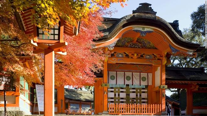 Nhung canh dep me hon o Nhat Ban hinh anh 13 Đền Usa (Oita): Được xây dựng vào thế kỷ 8, đền Usa là công trình quan trong nhất dành để thờ phụng Hachiman, thần cung tên và chiến tranh. Sau khi rút quẻ, du khách có thể thưởng thức món đặc sản Negiyaki (bánh kếp hành).