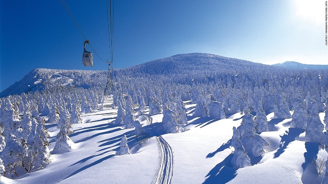 Nhung canh dep me hon o Nhat Ban hinh anh 5 Khu trượt tuyết Zao (Yamagata): Với 15 sườn dốc và 12 đường trượt khách nhau, Zao là một trong những khu trượt tuyết nổi tiếng nhất Nhật Bản. Du khách tới đây không phải chỉ để trượt tuyết mà còn để chiêm ngưỡng những cây thông phủ tuyết trắng xóa.
