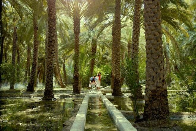 Nhung ly do khien Abu Dhabi tuyet hon Dubai hinh anh 10 10. Al Ain: Một ốc đảo có cung điện, vườn thú, pháo đài cổ, chợ lạc đà, câu lạc bộ săn bắn và một khu chèo thuyền vượt thác nhân tạo là những gì Al Ain đem lại cho du khách.