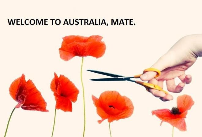 Nhung dieu gay ngac nhien cho nguoi lan dau toi Australia hinh anh 2